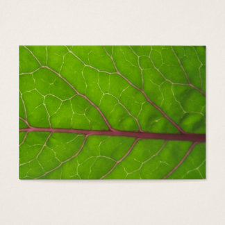 Kohlrabi Leaf ~ ATC Business Card