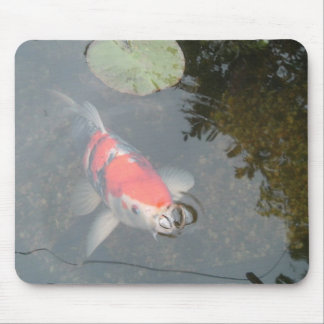 Koi Carp up Close View Mousepad