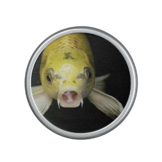 Koi Fish in Japan Bluetooth Speaker