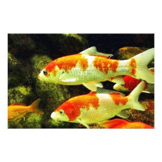 koi Fish Personalized Stationery