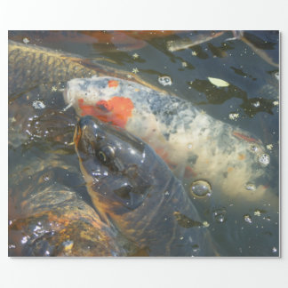 Koi Fish Pond Lake Wrapping Paper Gift
