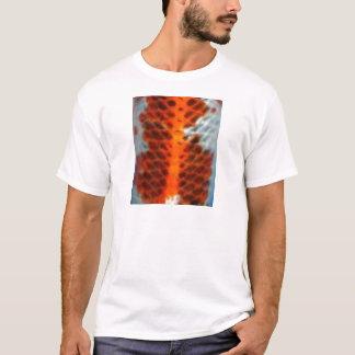 Koi Fish Skin T-Shirt