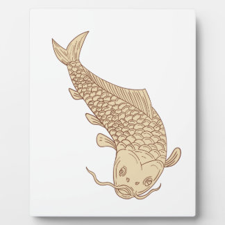 Koi Nishikigoi Carp Diving Down Drawing Plaque