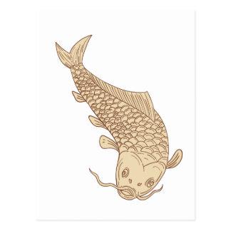 Koi Nishikigoi Carp Diving Down Drawing Postcard