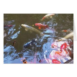 Koi Pond Photograph Greeting Card