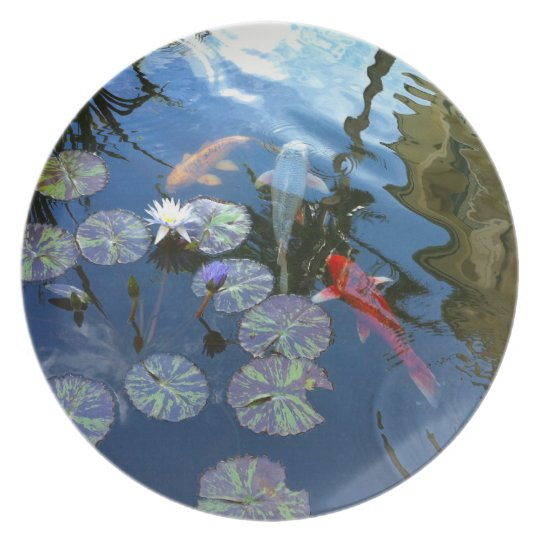 Koi pond plate for Koi ponds for dummies