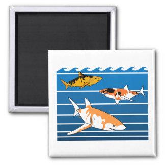 Koi Sharks Magnet