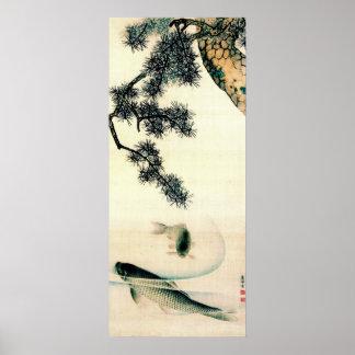 Koi Under Pine Branch 1900 Poster