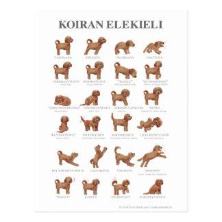 Koiran elekieli / Kortti Postcard