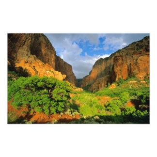 Kolob Canyon at Zion Canyon in Zion National Photo Print