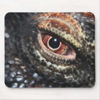 Komodo Dragon Eye mousepad