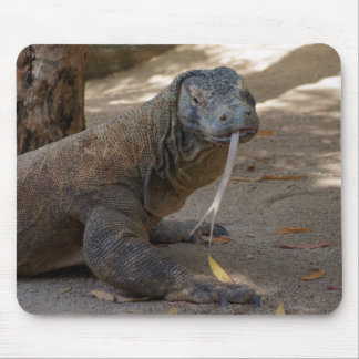 Komodo Dragon Licking Mouse Pad