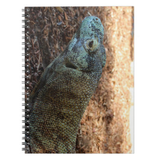 Komodo Dragon Notebook
