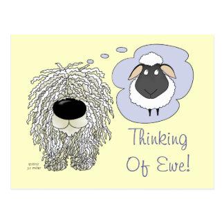 Komondor - Thinking of Ewe Postcard