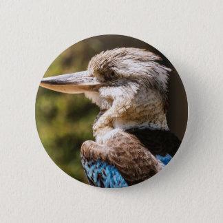 Kookaburra 6 Cm Round Badge