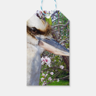 Kookaburra Beside A Blossom Tree, Gift Tags