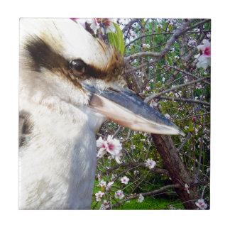 Kookaburra Beside Blossom Tree, Ceramic Tile