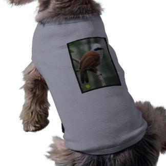 Kookaburra Bird Pet Shirt
