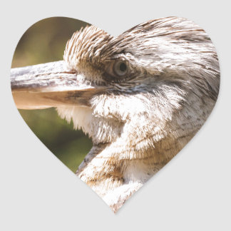 Kookaburra Heart Sticker