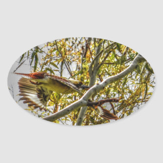 KOOKABURRA IN FLIGHT AUSTRALIA ART EFFECTS OVAL STICKER