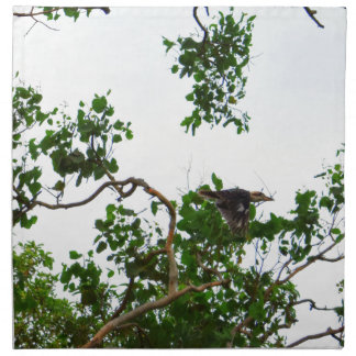 KOOKABURRA IN FLIGHT QUEENSLAND AUSTRALIA NAPKIN