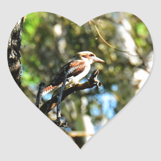 KOOKABURRA IN TREE QUEENSLAND AUSTRALIA HEART STICKER