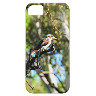 KOOKABURRA IN TREE QUEENSLAND AUSTRALIA iPhone 5 COVERS