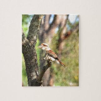KOOKABURRA IN TREE QUEENSLAND AUSTRALIA JIGSAW PUZZLE