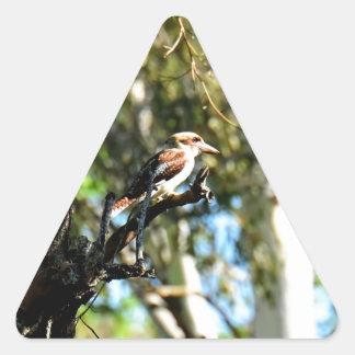 KOOKABURRA IN TREE QUEENSLAND AUSTRALIA TRIANGLE STICKER
