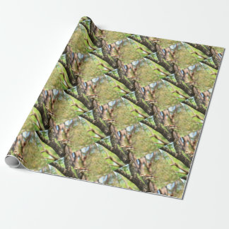 KOOKABURRA IN TREE QUEENSLAND AUSTRALIA WRAPPING PAPER