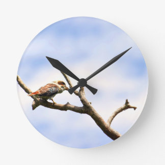 KOOKABURRA QUEENSLAND AUSTRALIA WALL CLOCKS