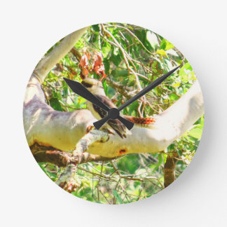 KOOKABURRA QUEENSLAND AUSTRALIA WALLCLOCKS