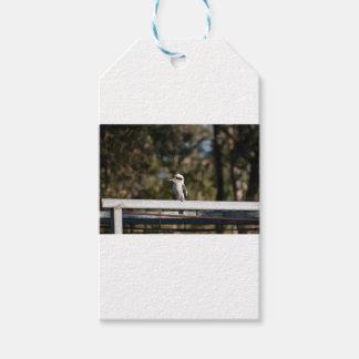 KOOKABURRA RURAL QUEENSLAND AUSTRALIA