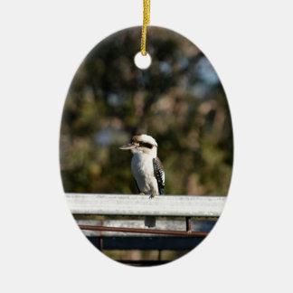 KOOKABURRA RURAL QUEENSLAND AUSTRALIA CERAMIC OVAL DECORATION