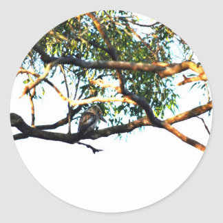 KOOKABURRA RURAL QUEENSLAND AUSTRALIA CLASSIC ROUND STICKER
