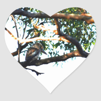 KOOKABURRA RURAL QUEENSLAND AUSTRALIA HEART STICKER