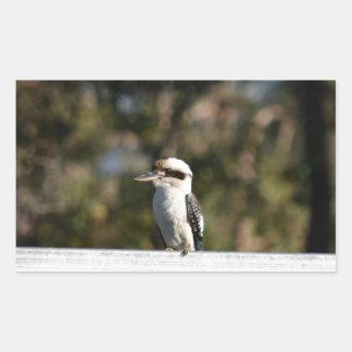 KOOKABURRA RURAL QUEENSLAND AUSTRALIA RECTANGULAR STICKER