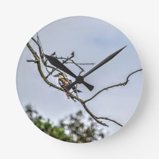 KOOKABURRA & WILLIE WAGTAIL QUEENSLAND AUSTRALIA WALLCLOCK