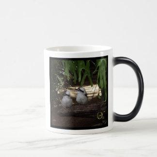 Kookaburras Laughing Magic Mug