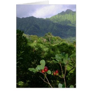 Ko'olau Mountains, O'ahu, Hawai'i Card
