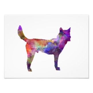 Korea Jindo Dog in watercolor Photo Print