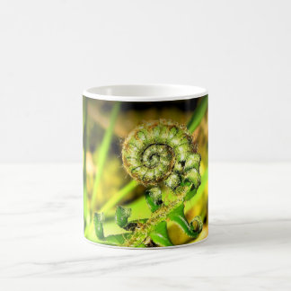 Koru spiral fern 11 oz Classic Mug