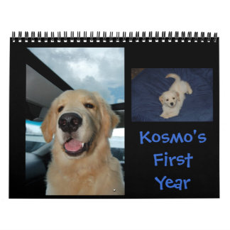 Kosmo's First Year Calendars
