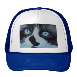 Kricket the Ragdoll Cat Cap