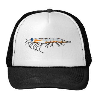 krill cap