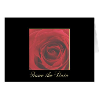 KRW Elegant Red Rose Save the Date Wedding Card