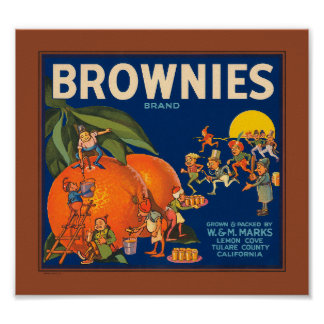 KRW Vintage Brownies Brand Oranges Fruit Crate Lab Poster