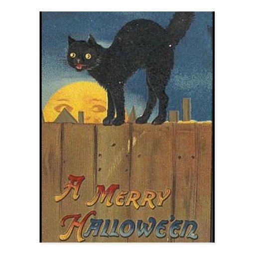 KRW Vintage Halloween Black Cat Postcards