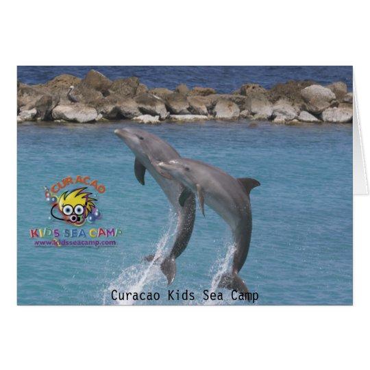 ksc_dolphin_, Curacao Kids Sea Camp Card