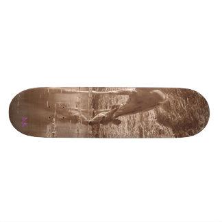 Kudu at water skateboard deck